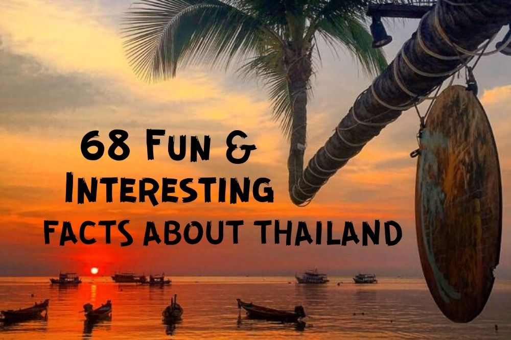 68 Interesting & Funny Thailand and Bangkok Facts