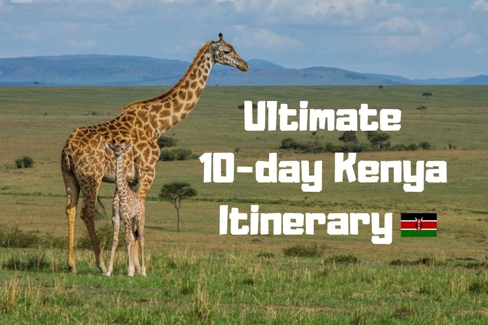 The Ultimate Kenya Itinerary for 10 days