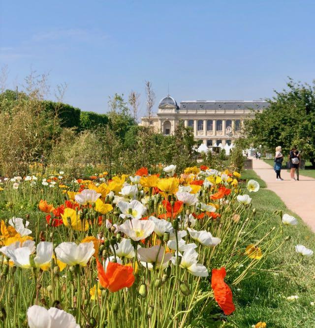 national museum garden paris