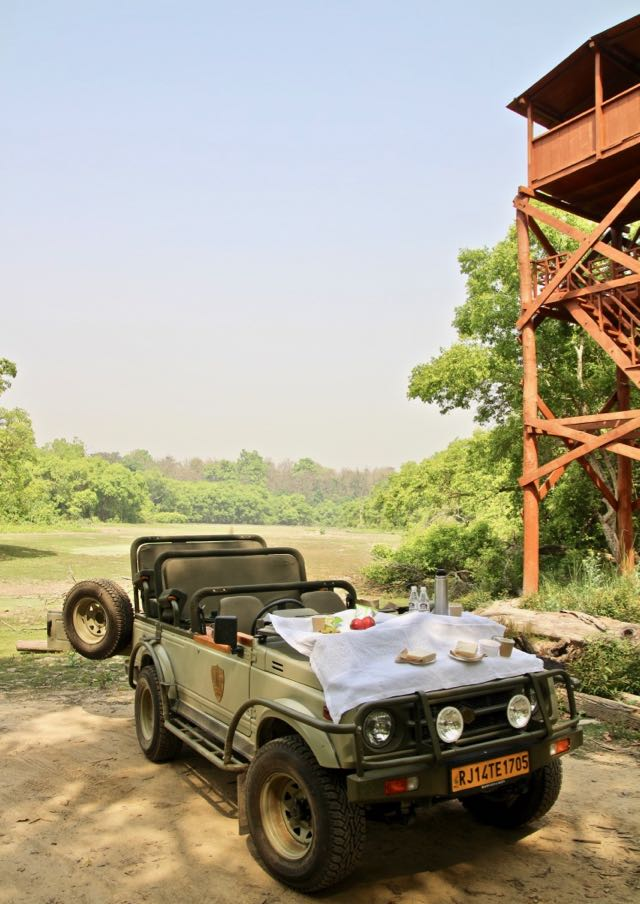 breakfast in dudhwa national park