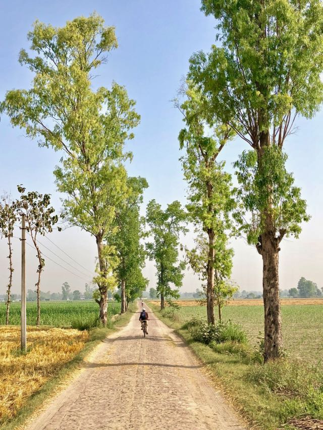 cycling tour dudhwa national park 2