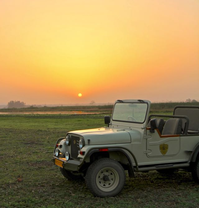 sunset tiger reserve dudhwa