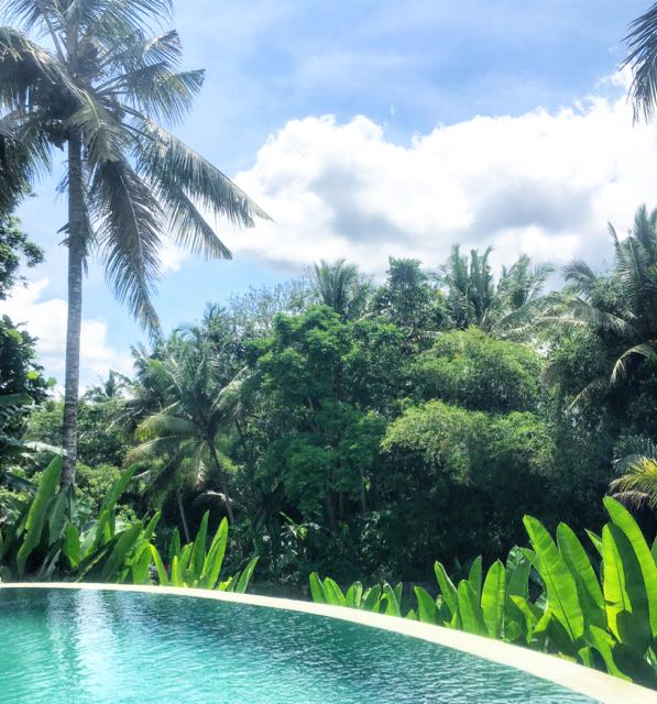 house for rent in ubud4