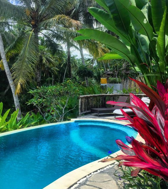 house for rent in ubud6