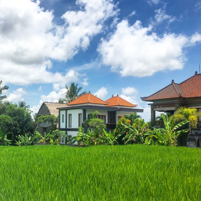 rent a house in ubud4
