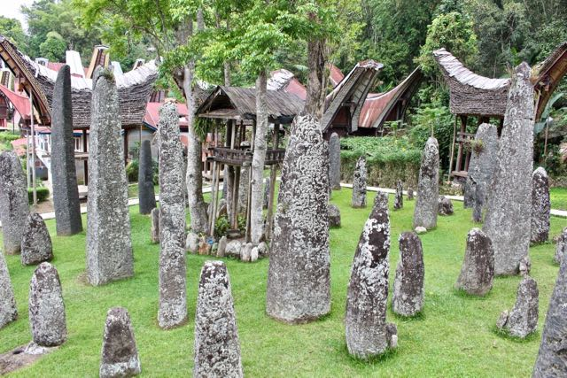 things to do in toraja bori