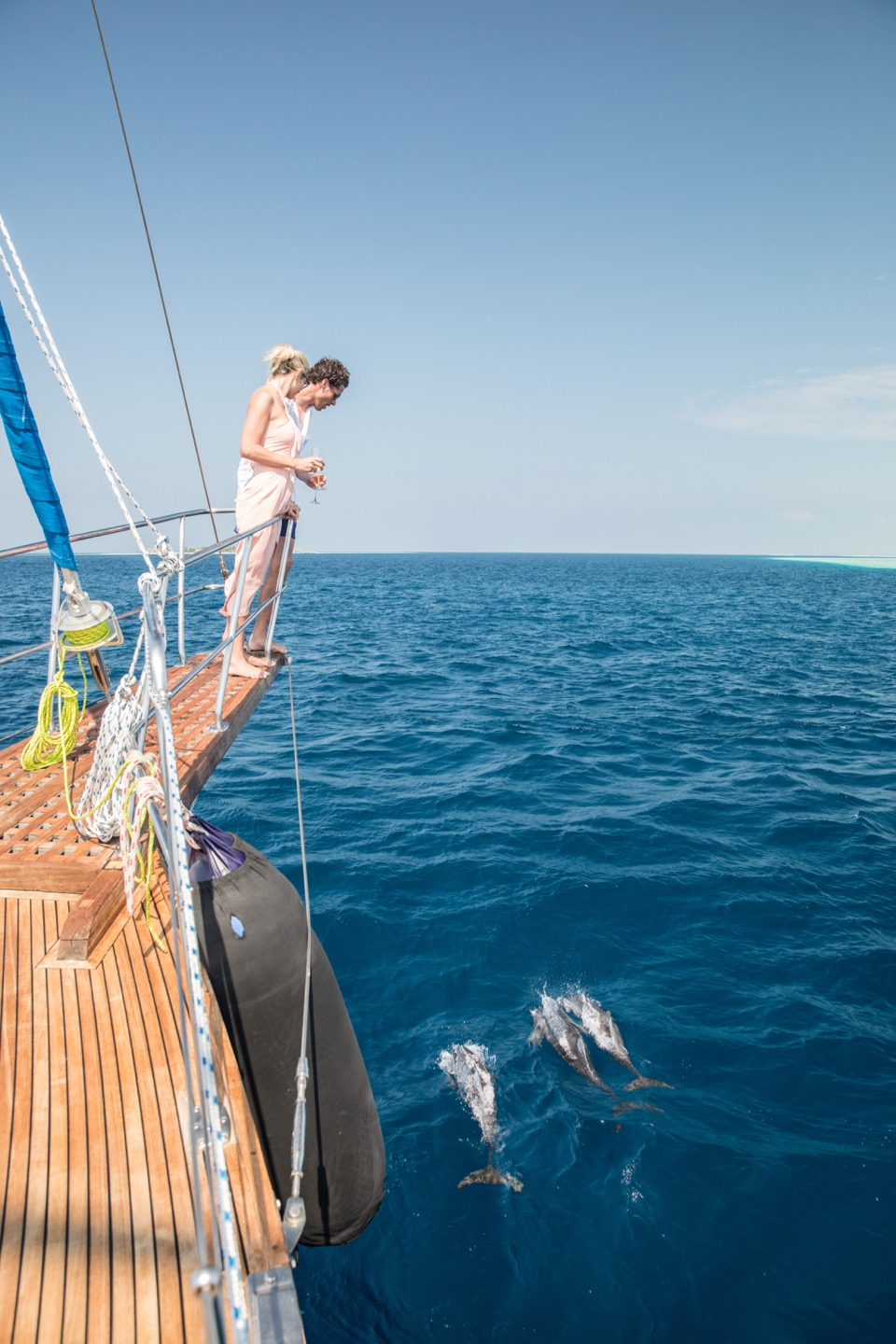dolphin Watching maldives