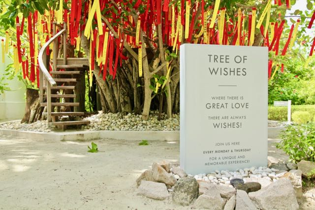 lux maldives tree of wishes 1
