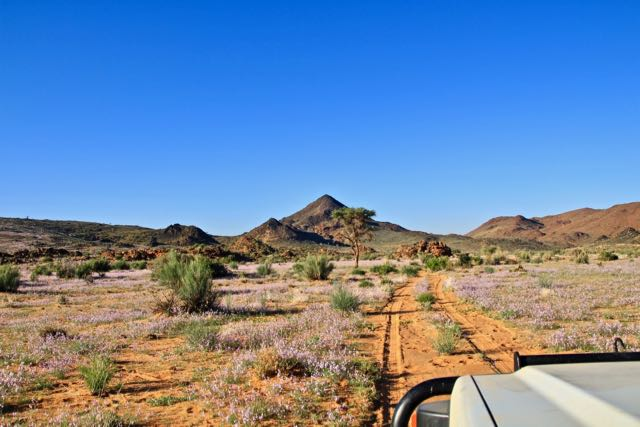 nature conservation namibia 3