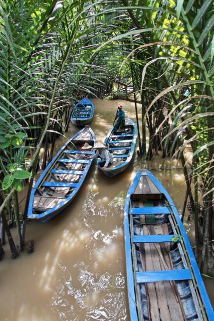 things to do in mekong delta 1